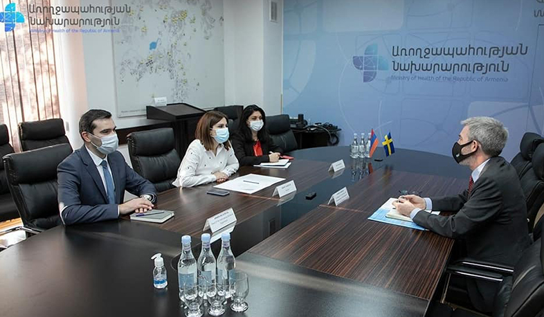 RA Minister of Health received the Ambassador of the Kingdom of Sweden