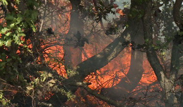Firefighters continue struggling against Byurakan fire