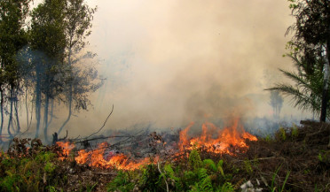 Fire extinguished in Jajur, Byurakan continues to fight