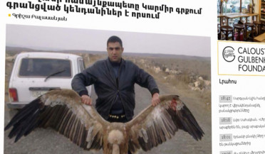 Griffon vulture poaching revealed