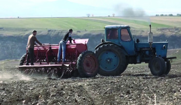 Autumn sowing in Lori