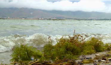 Algae growth in Lake Sevan to be examined