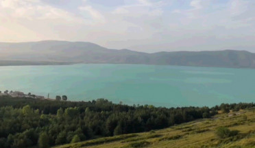 Swimming dangerous in Lake Sevan flowered areas