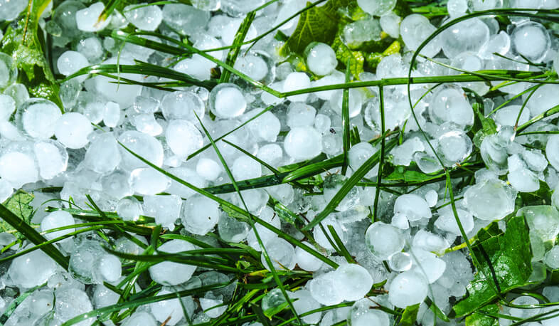 Hail damages Tavush harvest