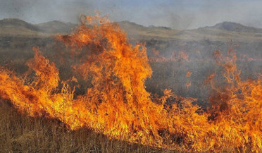 Number of fires grows in Armenia